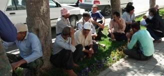 تجمعات-اعتراضی-دامداران-نقده-و-صاحبان-زمینهای-پرواز-ارومیه-و-پتروشیمی-ماهشهر